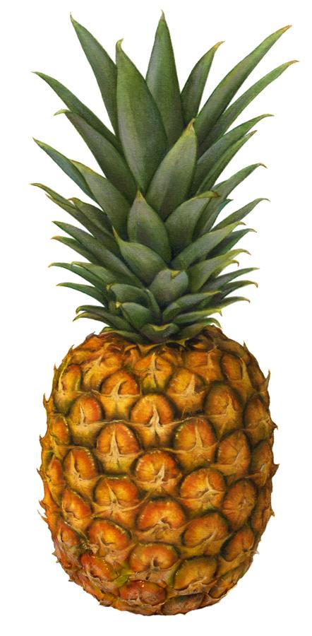 pineapple standing