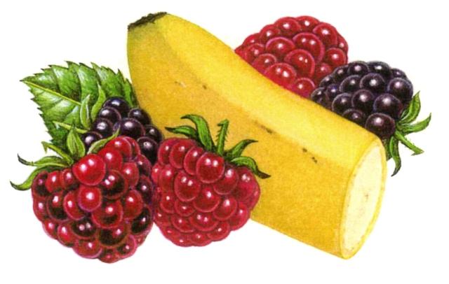 "Banana berry yogurt. I loved illustrating the ""huckleberry!"""