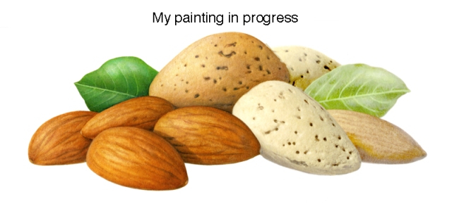 Almonds in progress