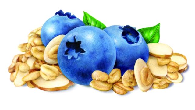 Blueberry Almond Final Art