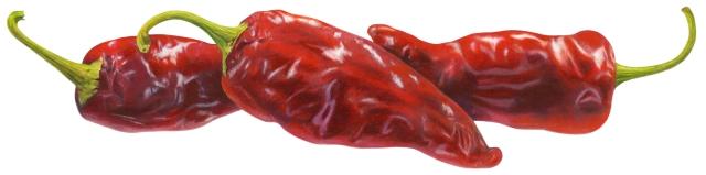 Chipotle Pepper Final Art