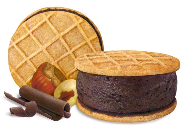 Chocolate Hazelnut Gelato Tillamookie
