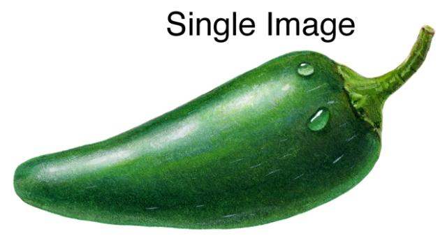 One Chili Pepper