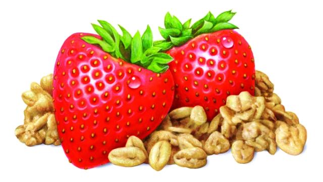 Strawberry Oat Final Art